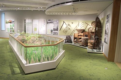 展示室2-1 自然と暮らす